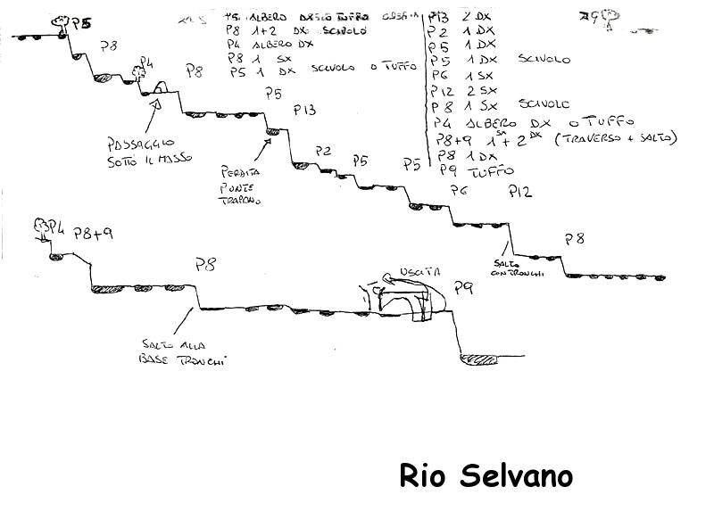 Rilievo-Rio-Selvano.png